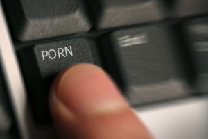 Porn Bittorrent Lawsuits Became A Parody. 2011 was definitely the year that ...